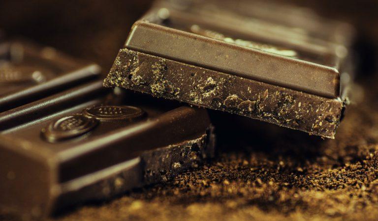 """루이스 C.K """"초콜릿 먹은 강아지, 응급조치"""""""